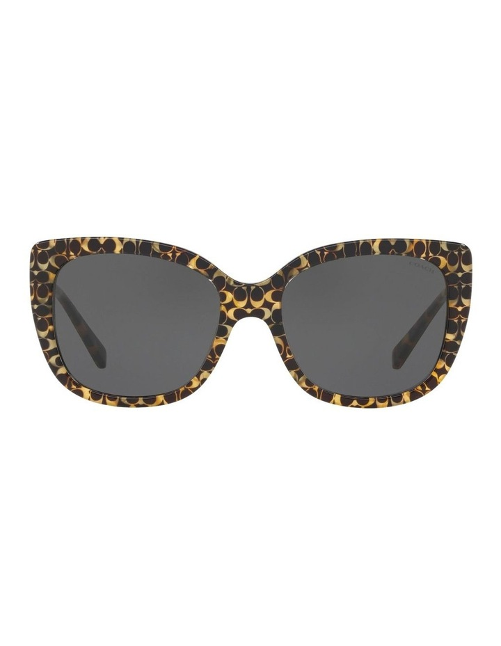 HC8246F 437537 Sunglasses image 1
