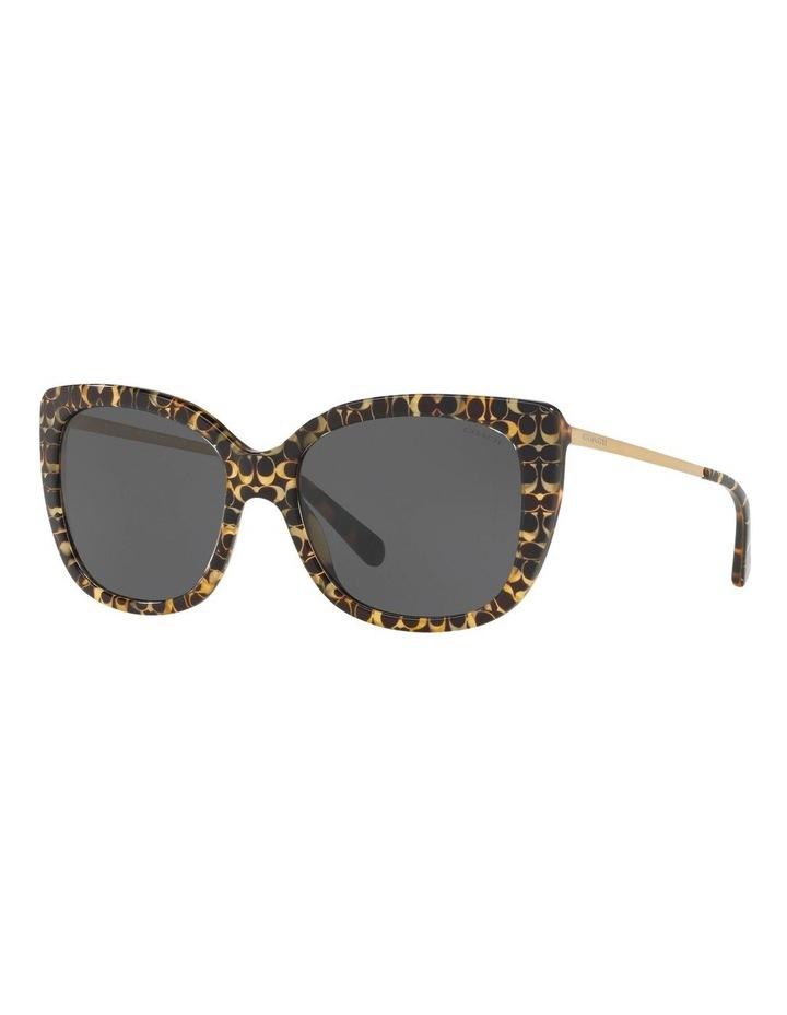 HC8246F 437537 Sunglasses image 2
