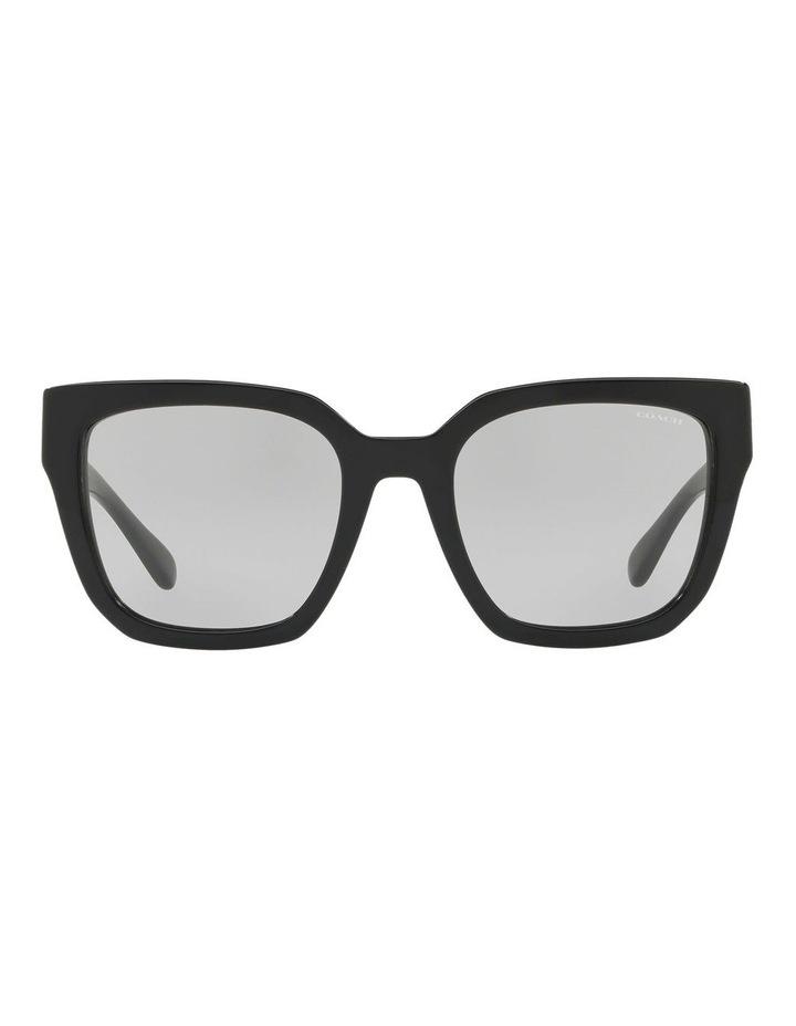 HC8249F 437538 Sunglasses image 1