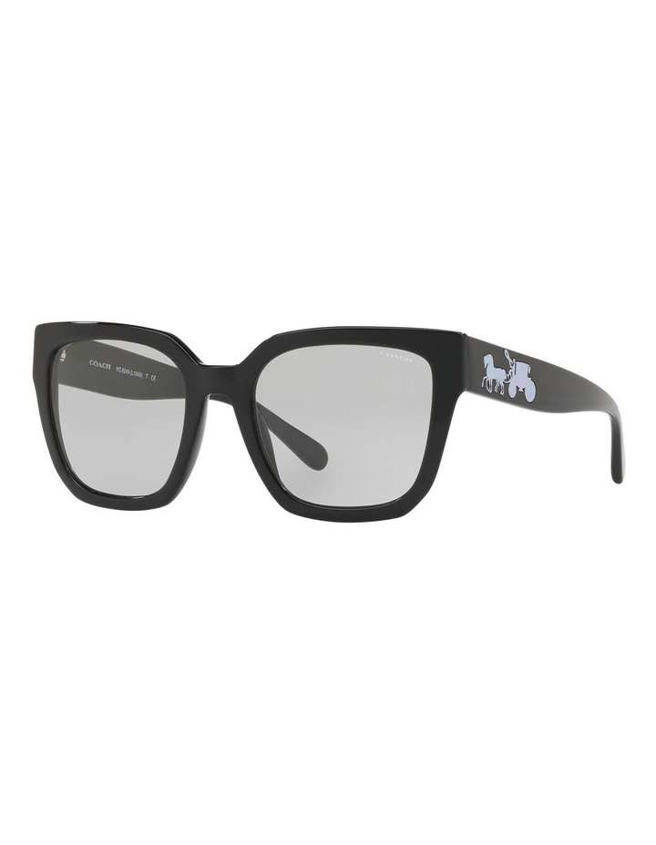 HC8249F 437538 Sunglasses image 2