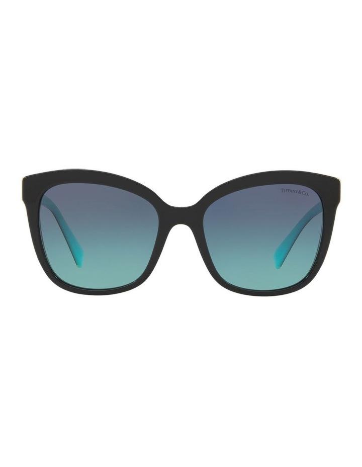 TF4150 437588 Sunglasses image 1