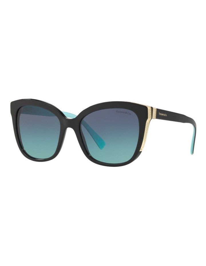 TF4150 437588 Sunglasses image 2