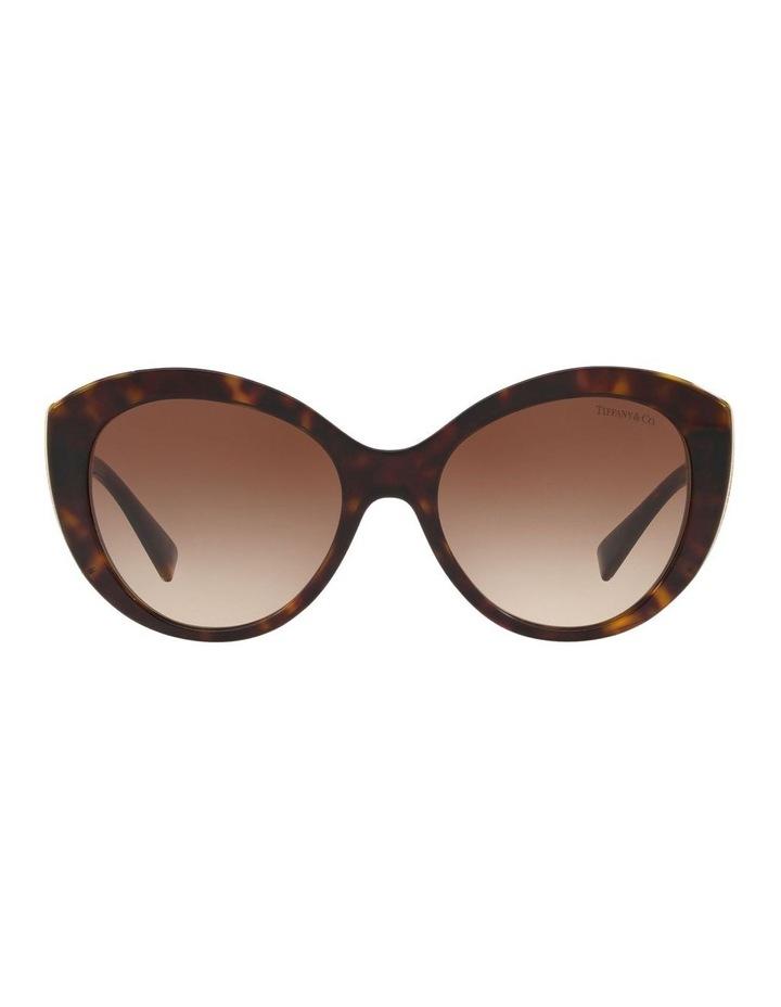 TF4151 437590 Sunglasses image 1