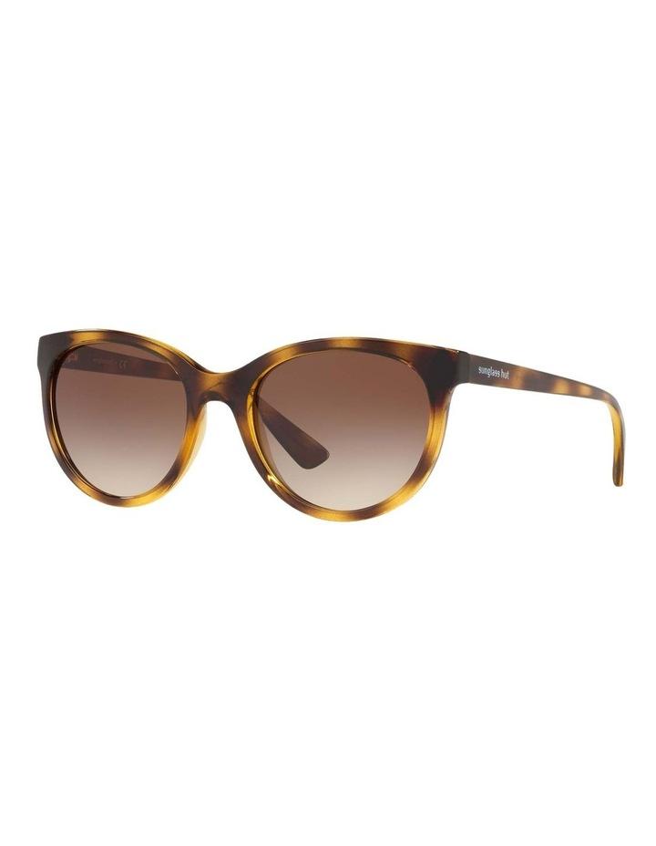 Brown Cat Eye Sunglasses HU2011 437238 image 1