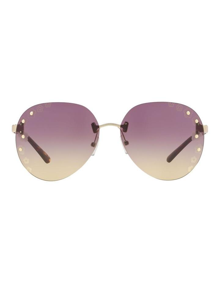 MK1037 437527 Sunglasses image 1