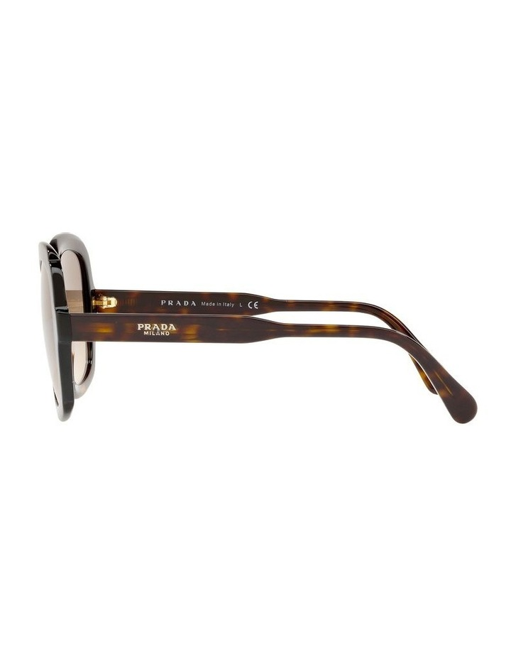 Brown Square Sunglasses PR16US 439125 image 4