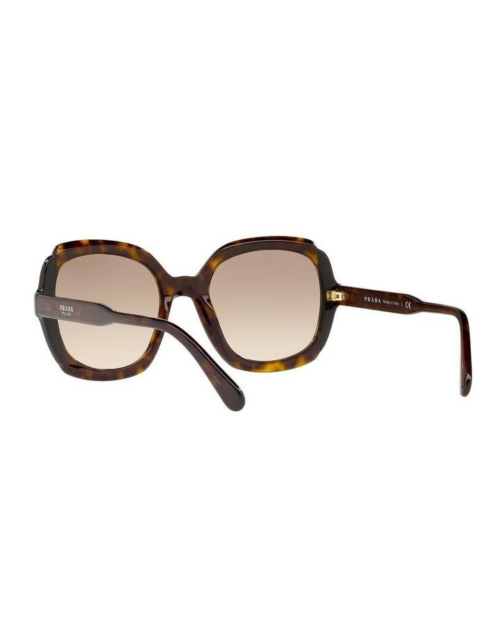 Brown Square Sunglasses PR16US 439125 image 6