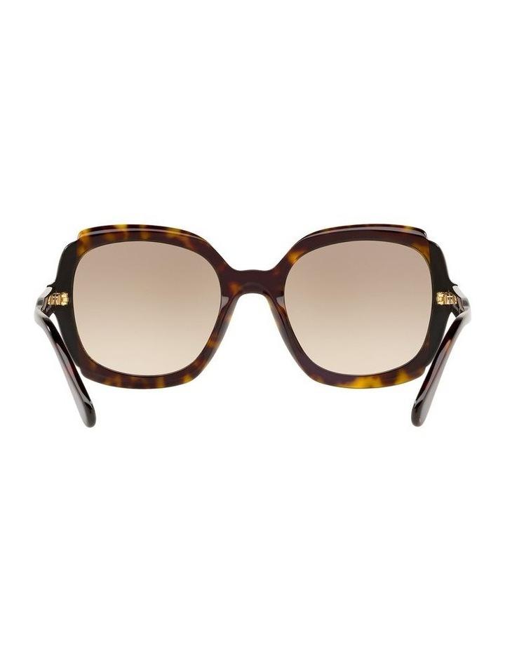 Brown Square Sunglasses PR16US 439125 image 7