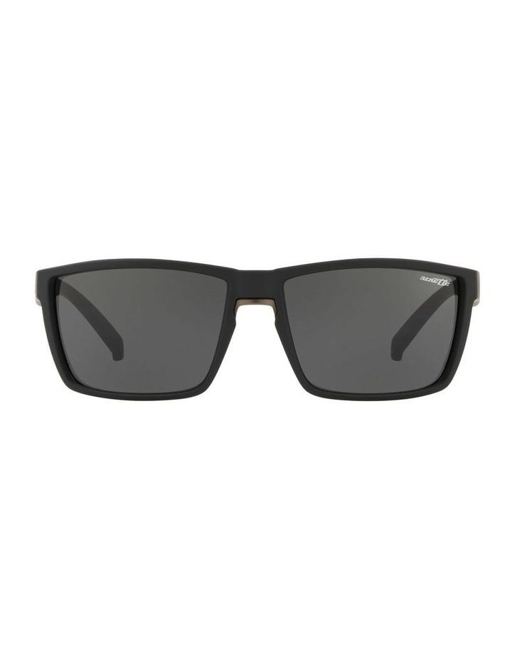 AN4253 439028 Sunglasses image 1