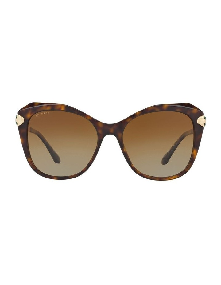 42091b79c0b BV8187KF 401597 Polarised Sunglasses image 1