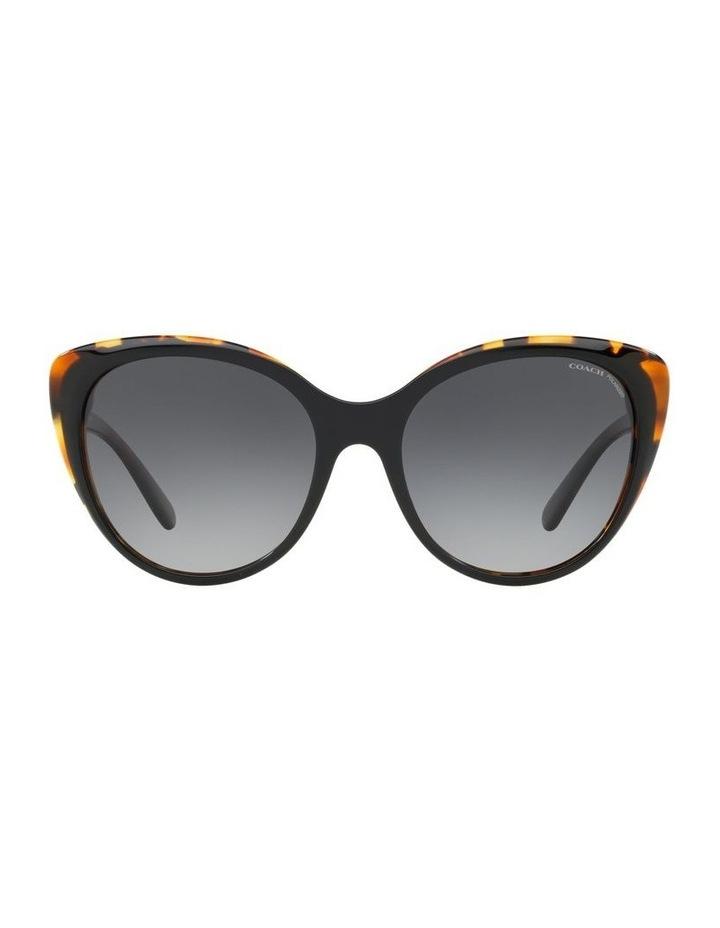 HC8260 440014 Polarised Sunglasses image 1
