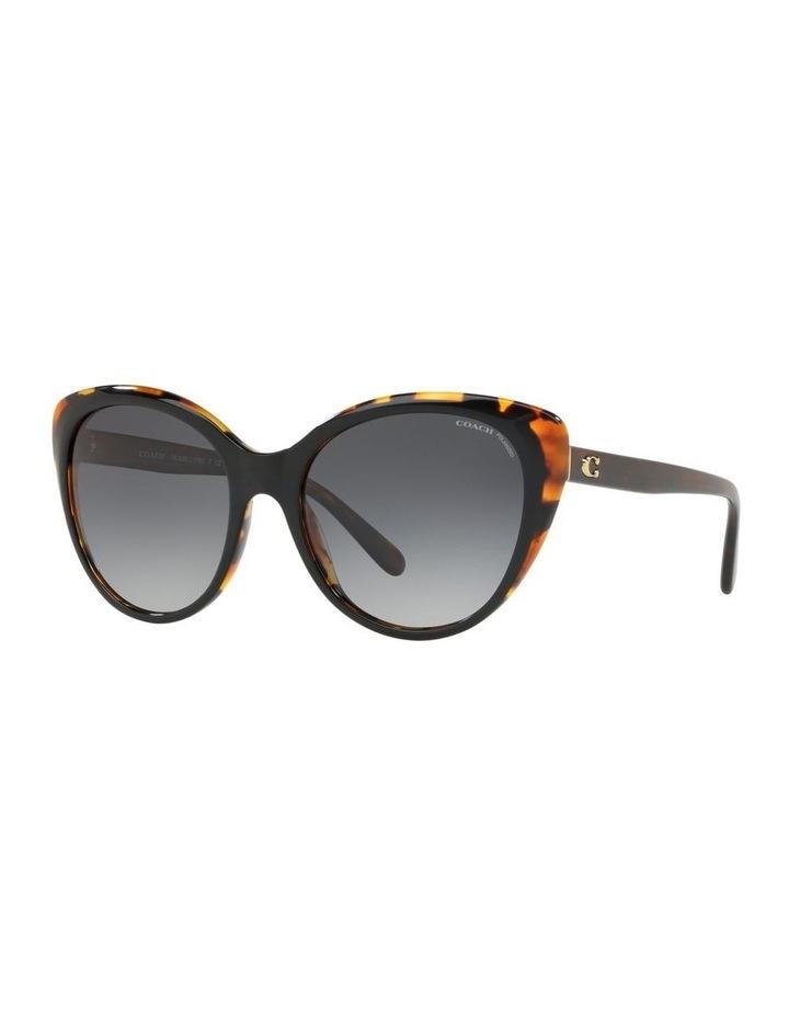 HC8260 440014 Polarised Sunglasses image 2
