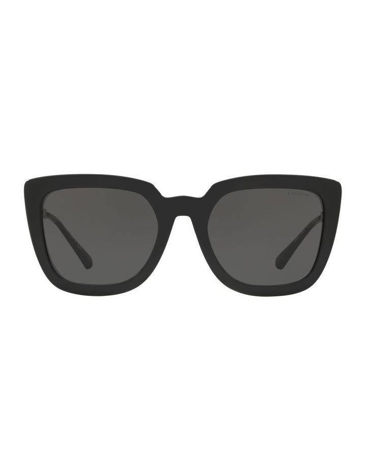 HC8258U 439188 Sunglasses image 1