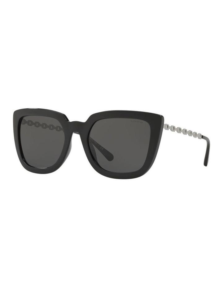 HC8258U 439188 Sunglasses image 2