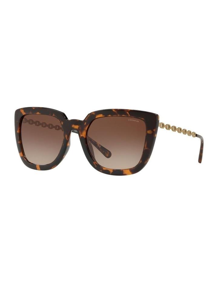 HC8258U 439189 Sunglasses image 2