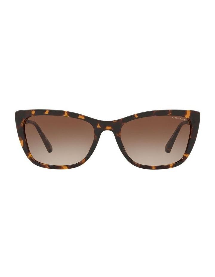 HC8257U 439190 Sunglasses image 1