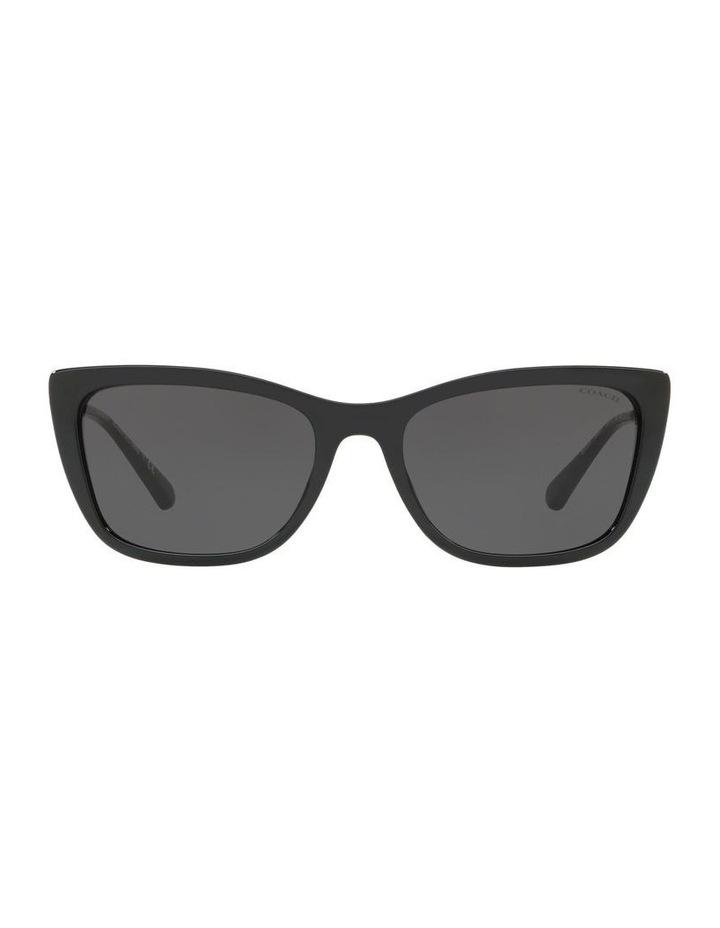 HC8257U 439191 Sunglasses image 1