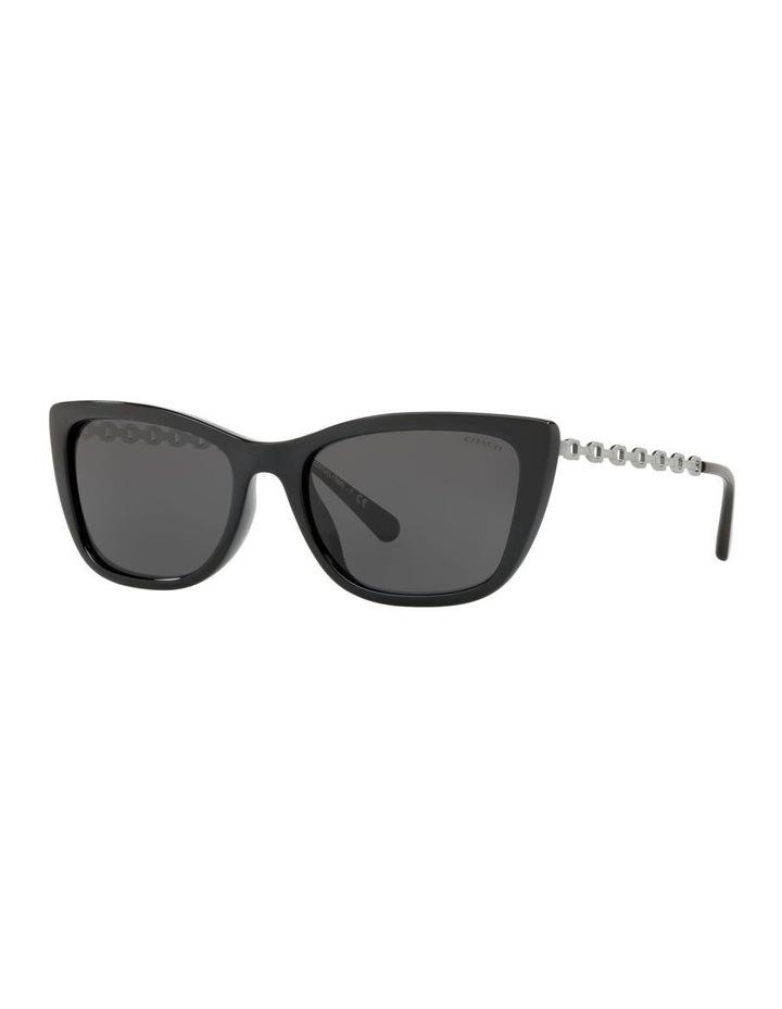 HC8257U 439191 Sunglasses image 2