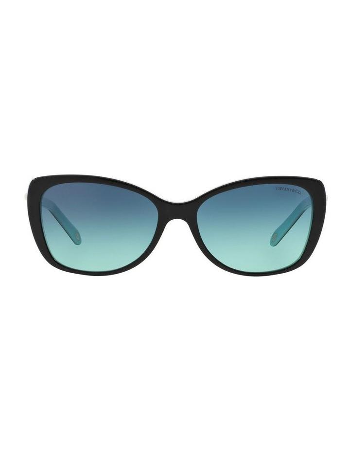 TF4103HB 372846 Sunglasses image 1