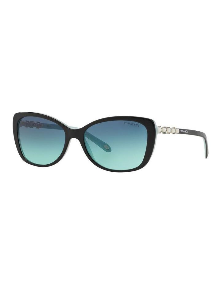 TF4103HB 372846 Sunglasses image 2