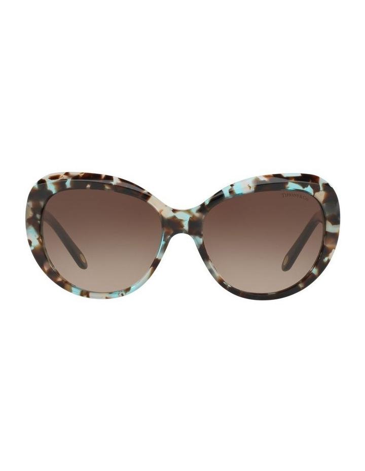 TF4122 397079 Sunglasses image 1