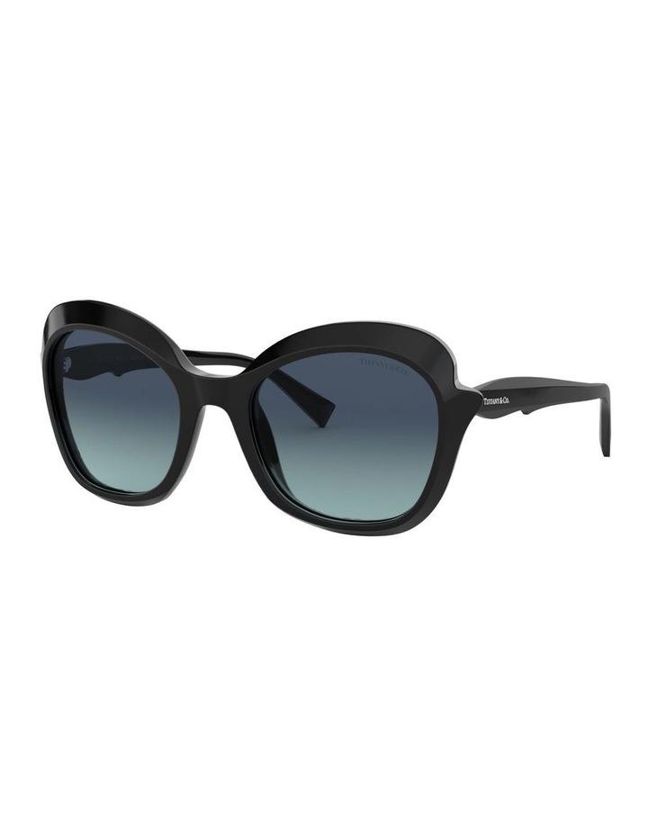 TF4154F 439331 Sunglasses image 2
