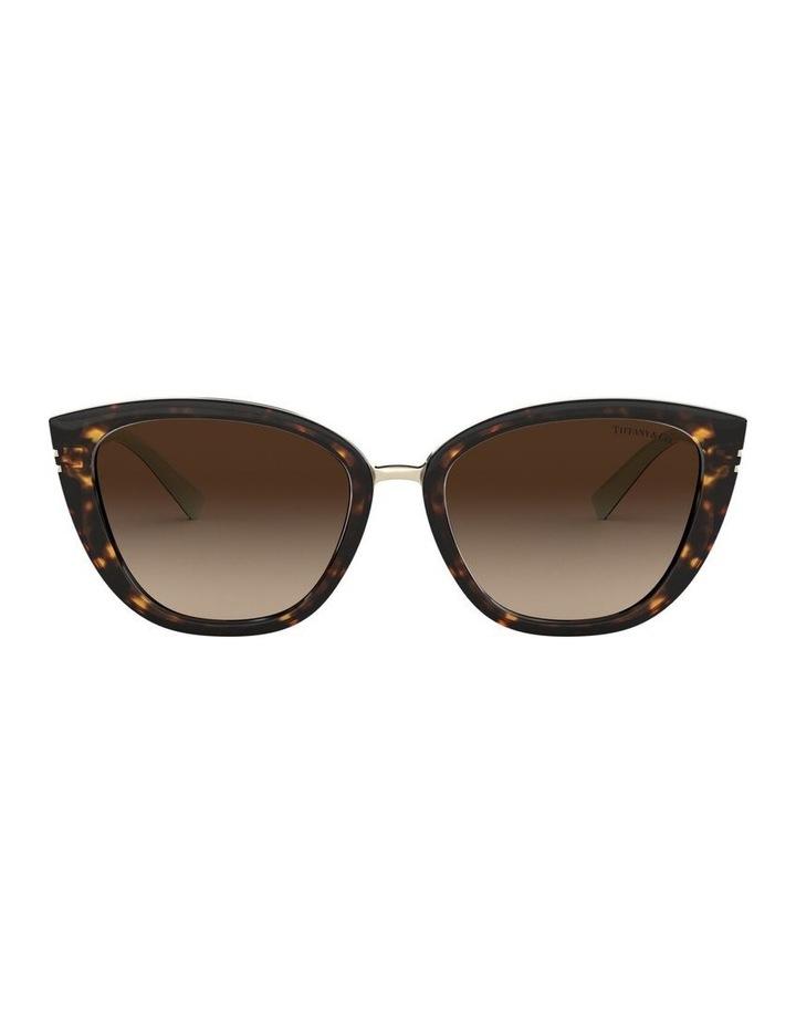 TF4152 439326 Sunglasses image 1