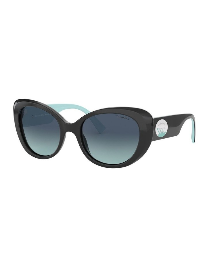 TF4153 439327 Sunglasses image 1