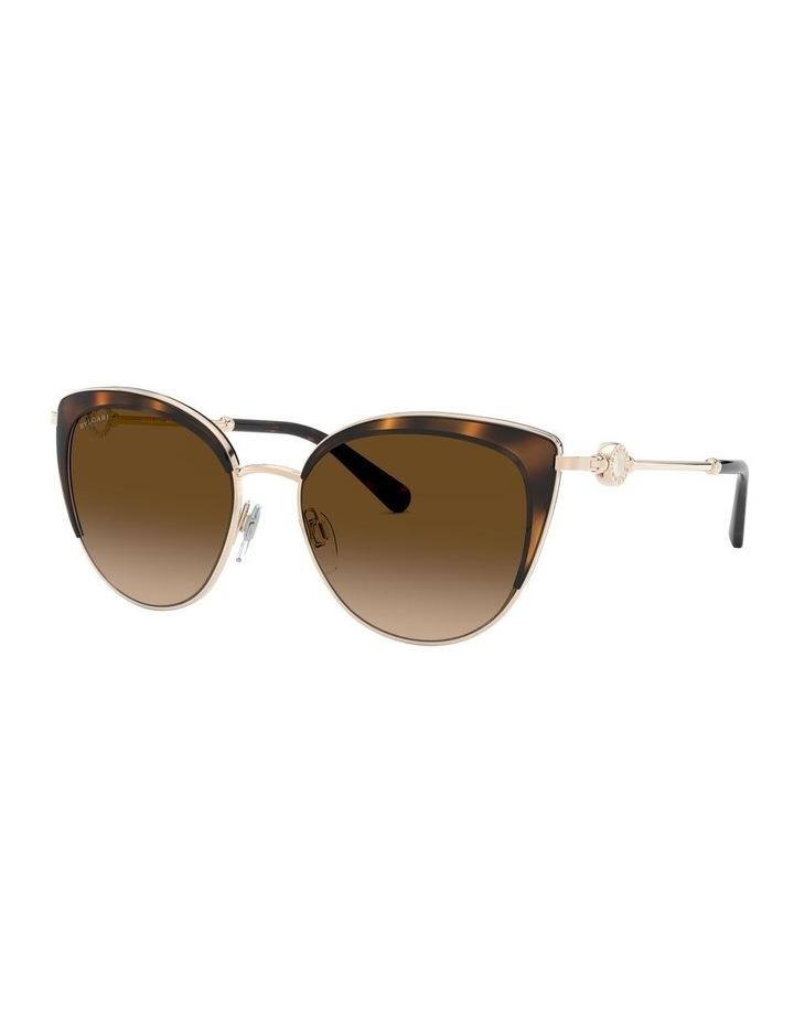 Brown Cat Eye Sunglasses 0BV6133 1526885003 image 1