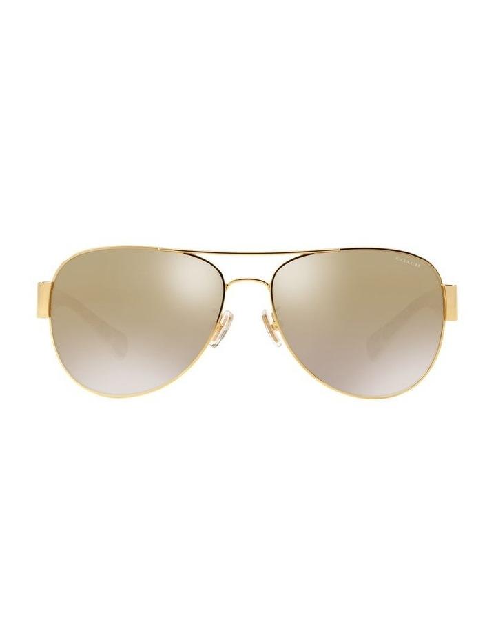 0HC7059 1507820007 Sunglasses image 1