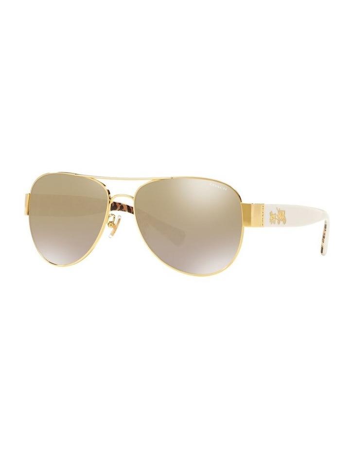 0HC7059 1507820007 Sunglasses image 2
