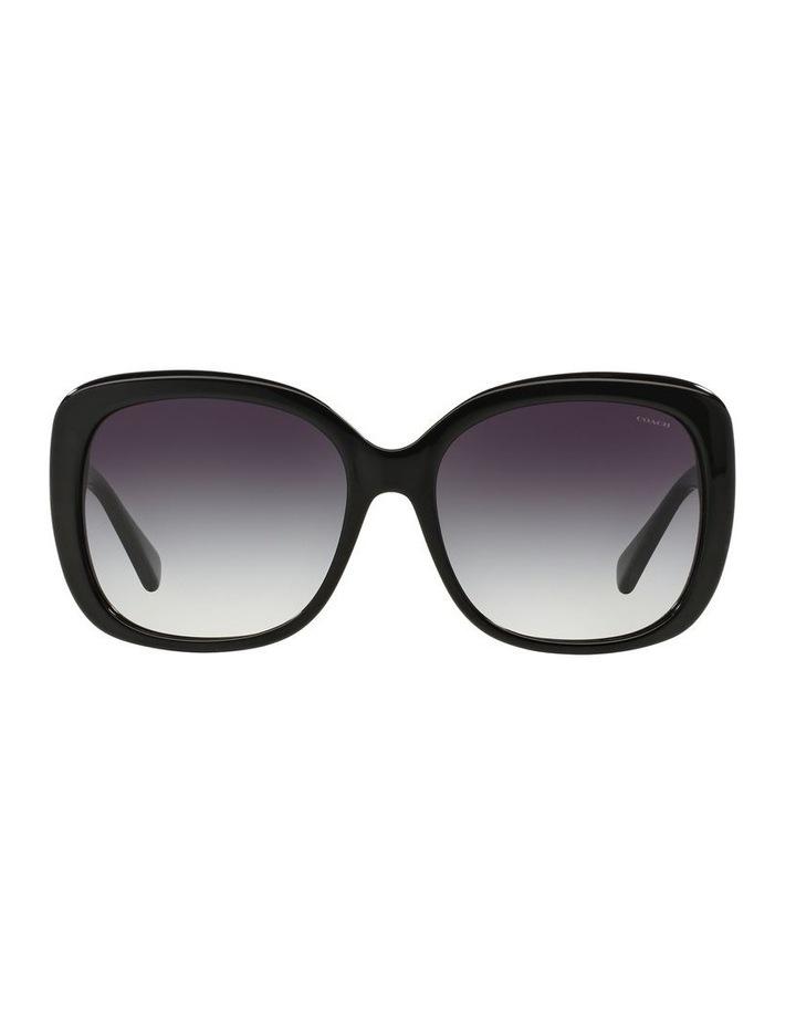 0HC8158 1507821002 Sunglasses image 1
