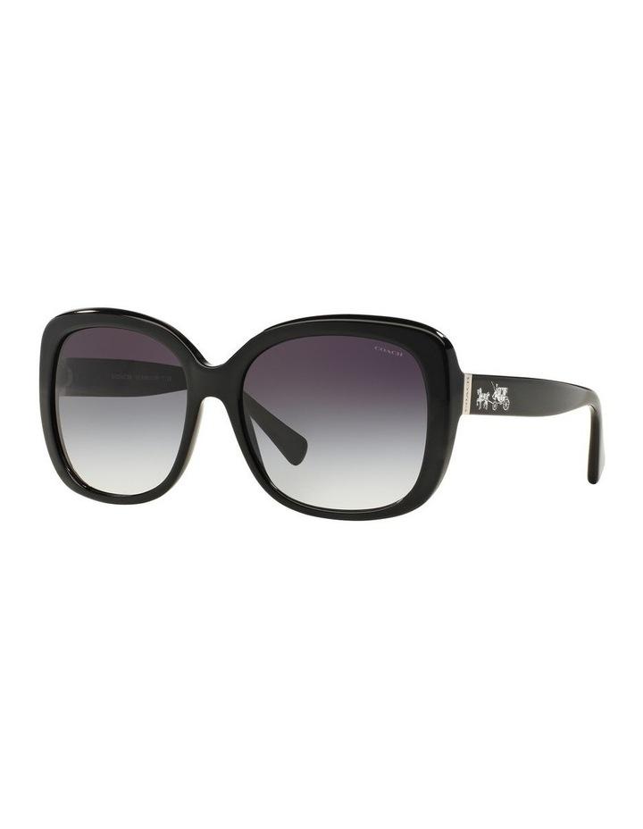 0HC8158 1507821002 Sunglasses image 2