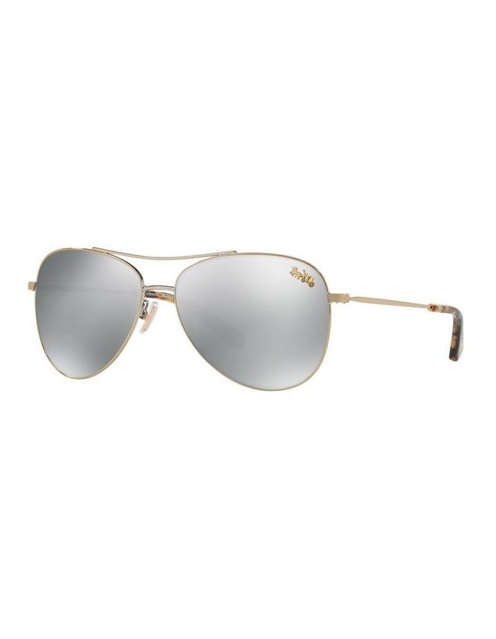 Grey Aviator Sunglasses 0HC7079 1516792001 P image 1