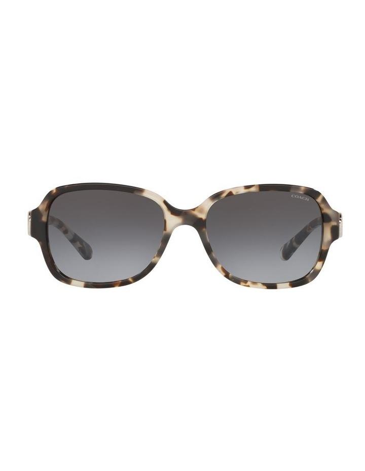 0HC8241 1518347007 Sunglasses image 1