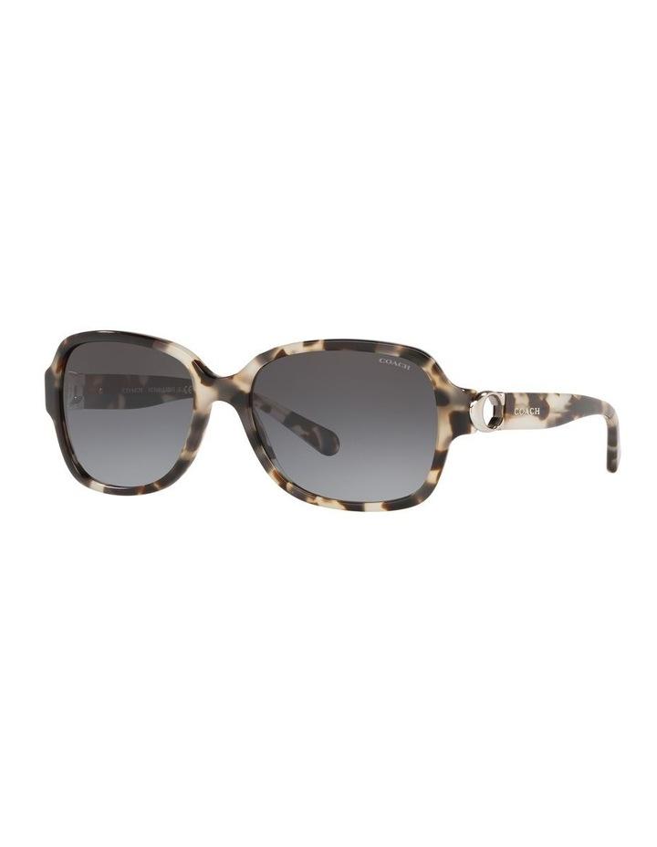0HC8241 1518347007 Sunglasses image 2