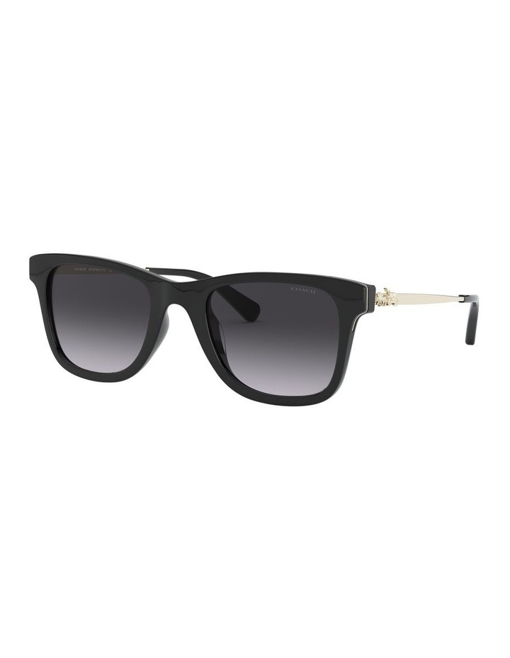 0HC8279U 1526434001 Sunglasses image 2