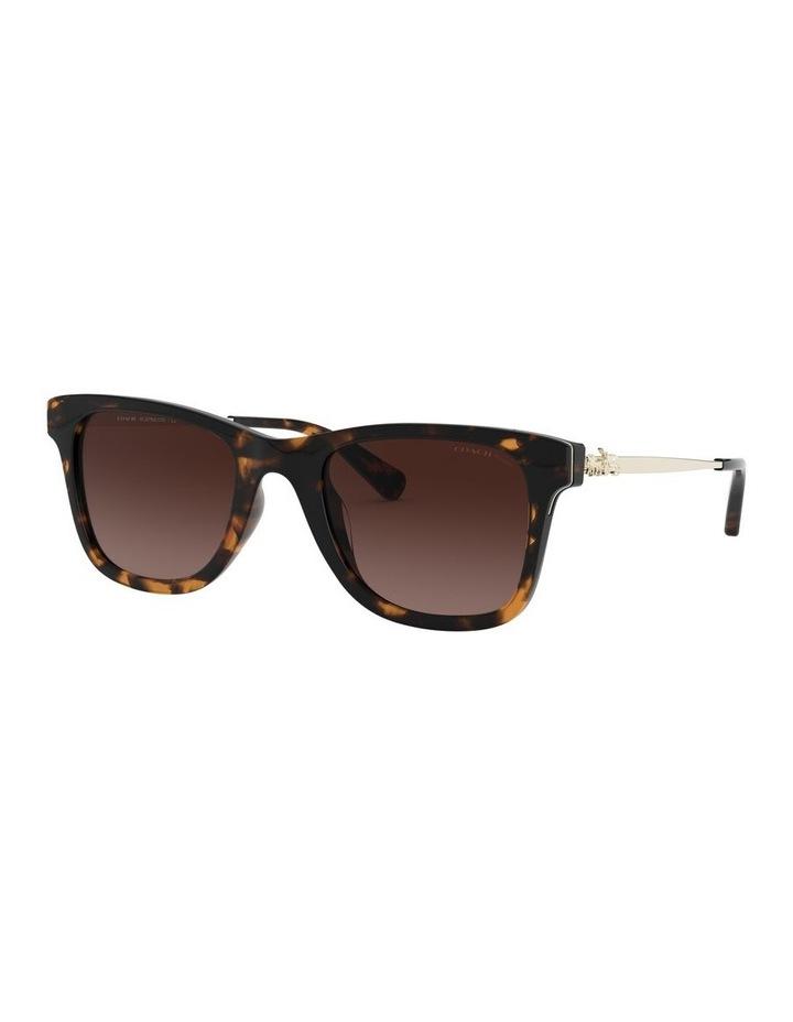 0HC8279U 1526434003 Sunglasses image 2