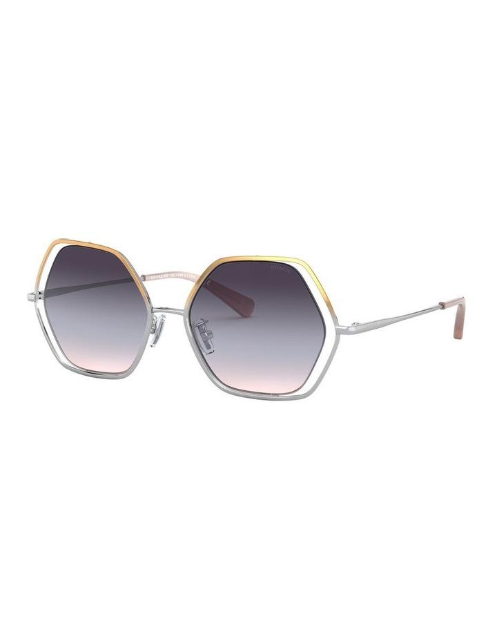 0HC7109 1528634001 Sunglasses image 2