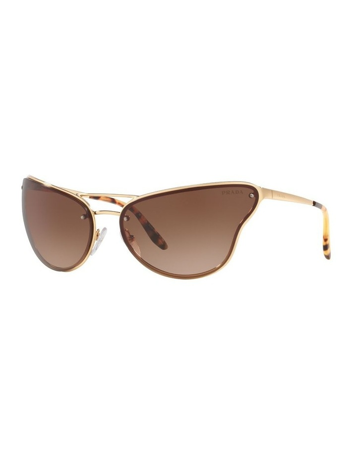 Brown Cat Eye Sunglasses 0PR 74VS 1525200001 image 1