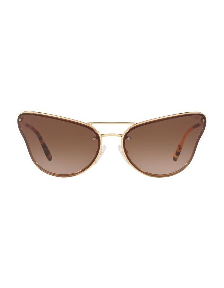 Brown Cat Eye Sunglasses 0PR 74VS 1525200001 image 2