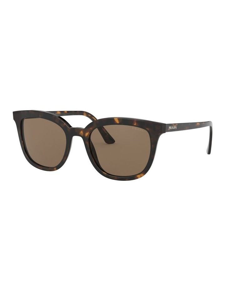 Brown Retro Sunglasses 0PR 03XS 1526550002 image 1