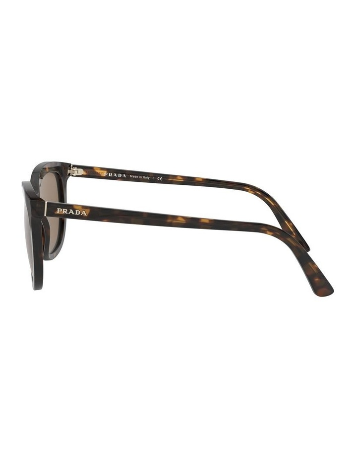 Brown Retro Sunglasses 0PR 03XS 1526550002 image 4