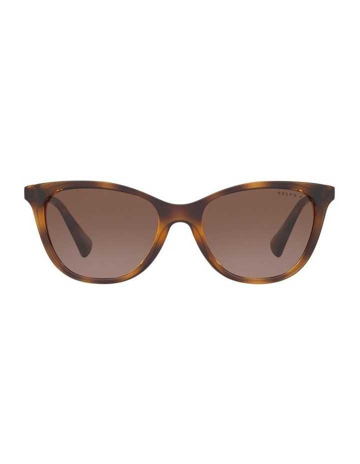 Brown Cat Eye Sunglasses 0RA5259 1524257002 P image 2