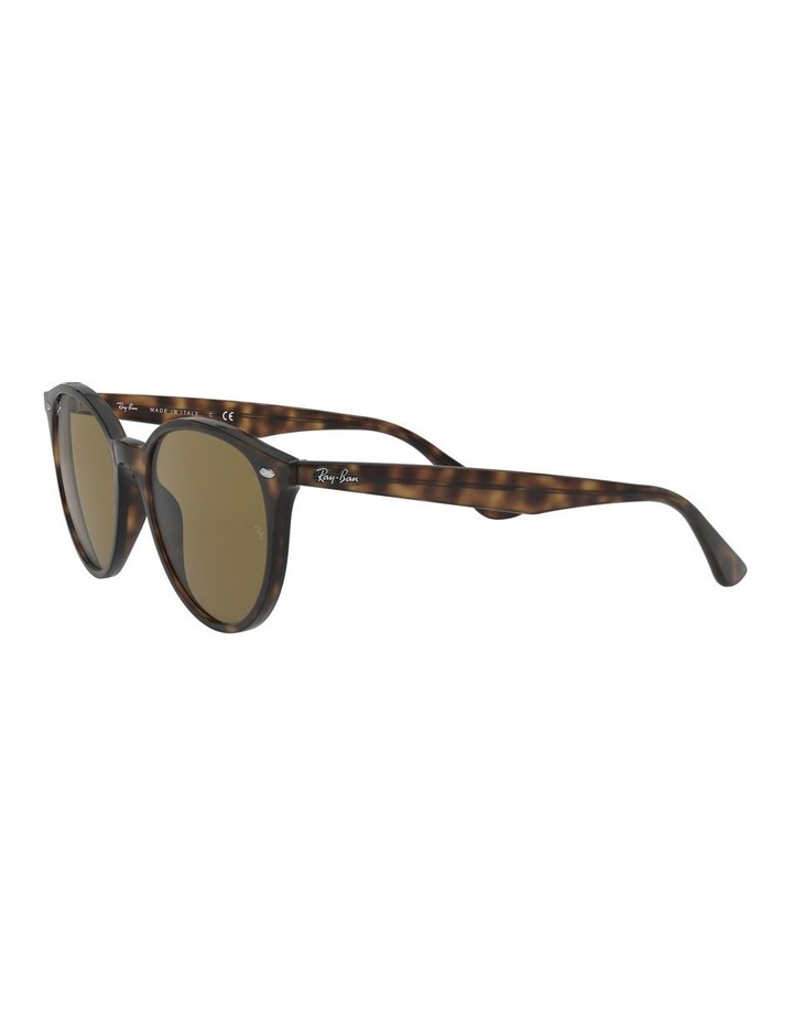 Brown Round Sunglasses 0RB4305 1524340005 image 3