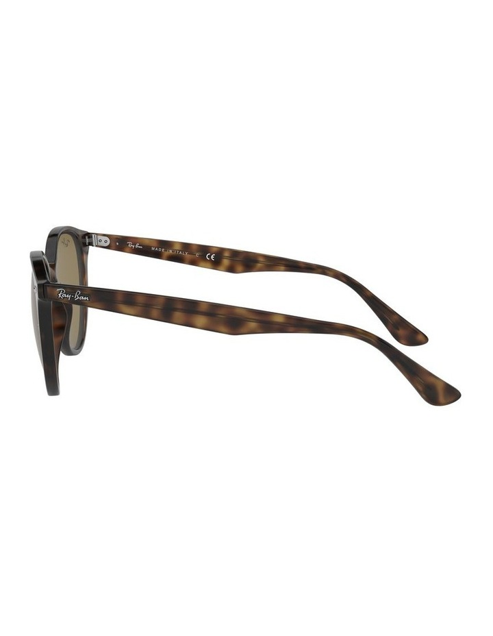 Brown Round Sunglasses 0RB4305 1524340005 image 4