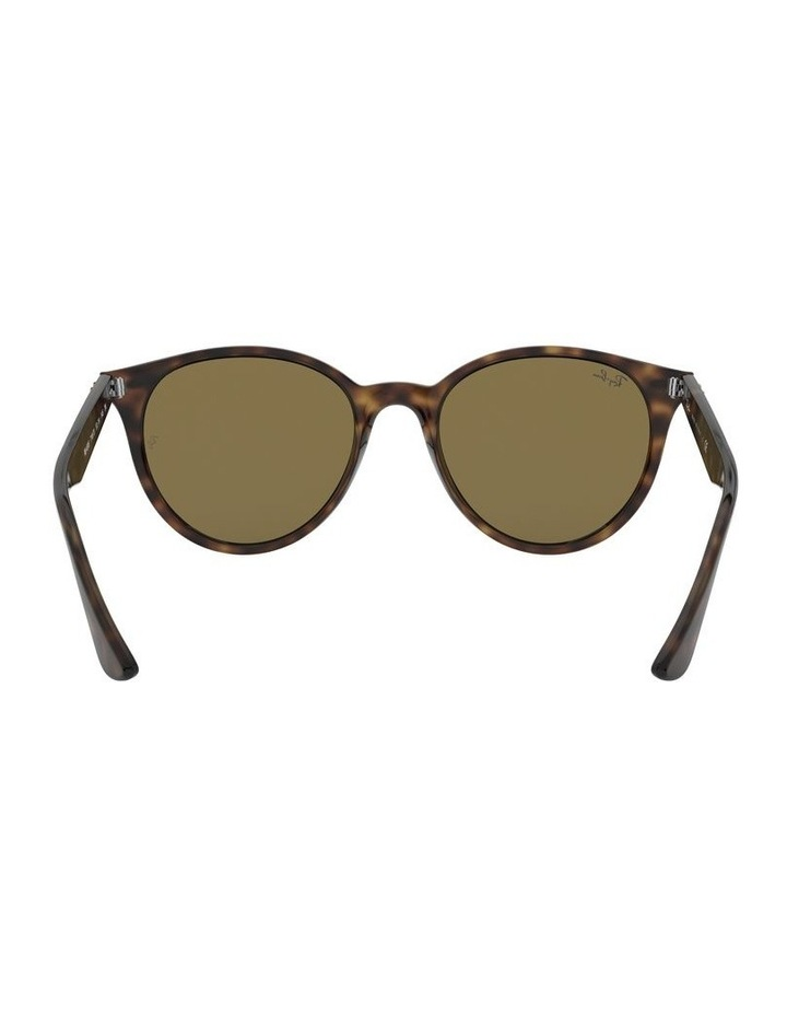 Brown Round Sunglasses 0RB4305 1524340005 image 7