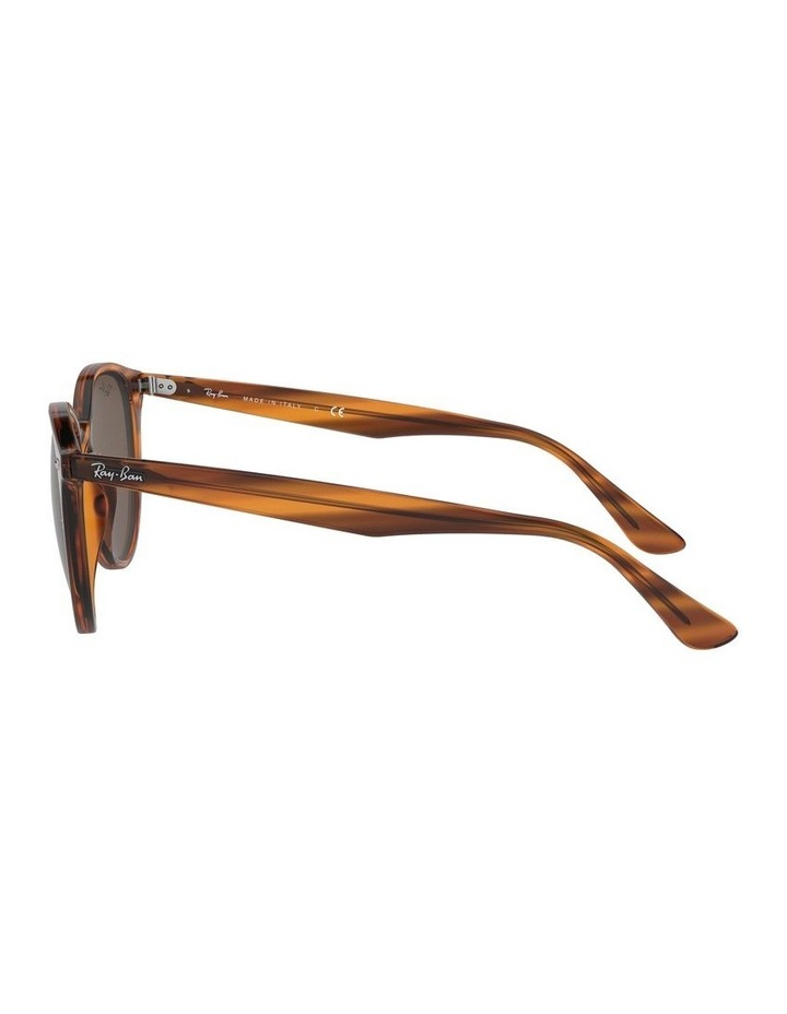 Brown Round Sunglasses 0RB4305 1524340007 image 4