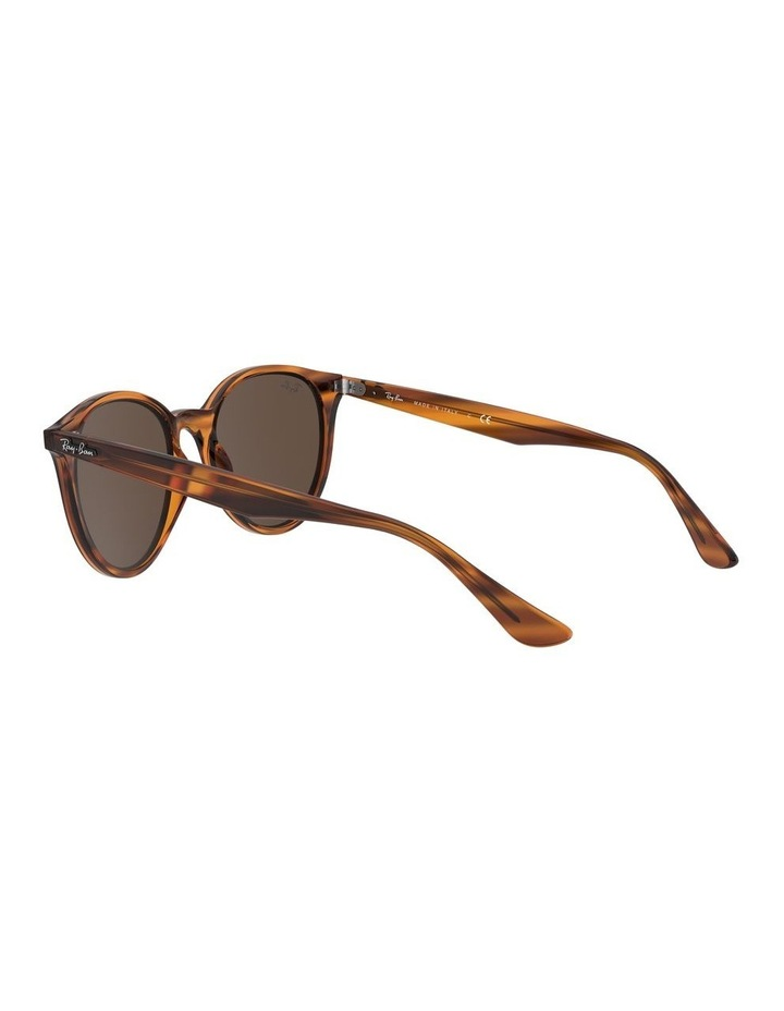 Brown Round Sunglasses 0RB4305 1524340007 image 5