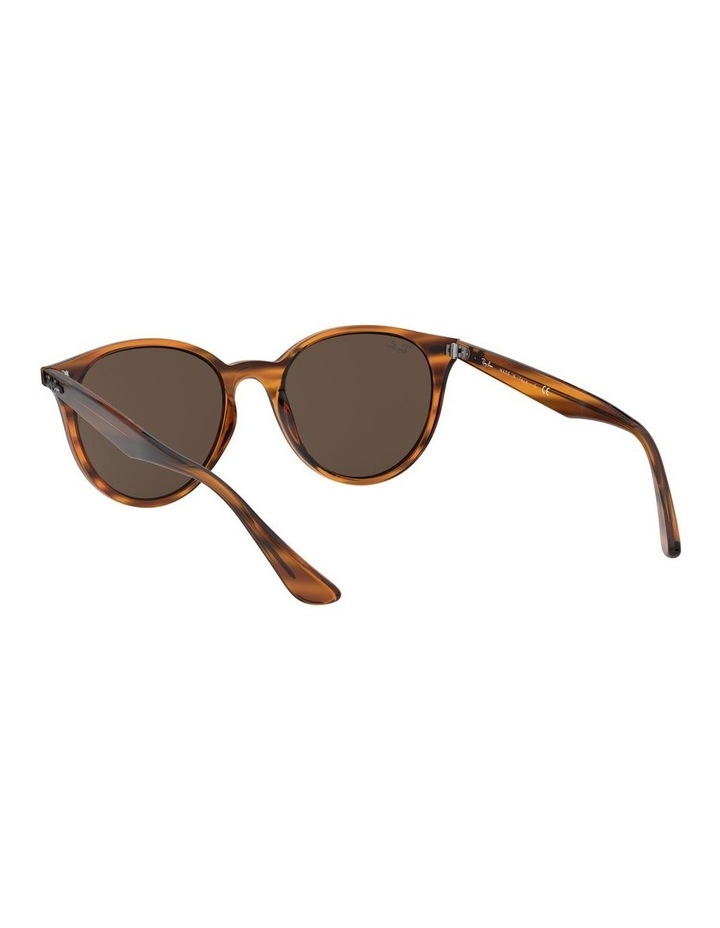 Brown Round Sunglasses 0RB4305 1524340007 image 6